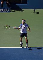 Ferrer Forehand US Open 2013