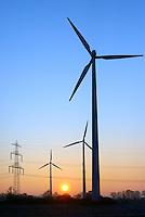 Ochsenwerder Windkraft: DEUTSCHLAND, HAMBURG 22.01.2016: Ochsenwerder Windkraftanlagen bei Sonnenaufgang