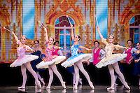 Sleeping Beauty - Principal Dancers & Fairies