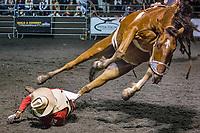RAM Rodeo'17 1013, 14 &15 Finals, Newmarket