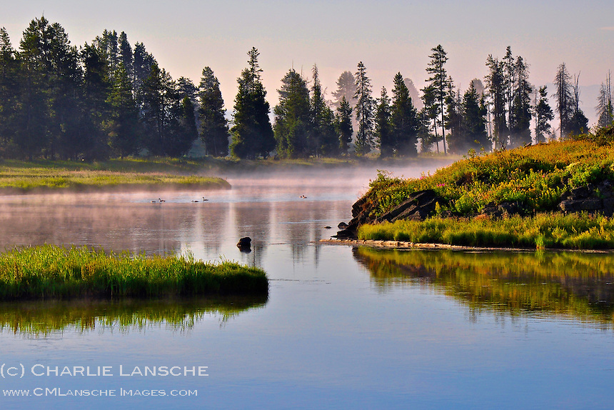 Mist rises from the pristine waters of Idaho's Henry's Fork of the Snake River on a cool morning in July.