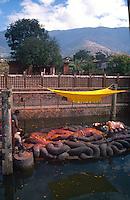 Floating Vishnu.