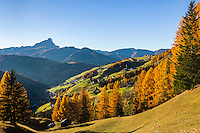 Italy, South Tyrol (Trentino-Alto Adige), La Valle: at background Sass Rigais mountain | Italien, Suedtirol (Trentino-Alto Adige), Wengen: im Hintergrund der Sass Rigais