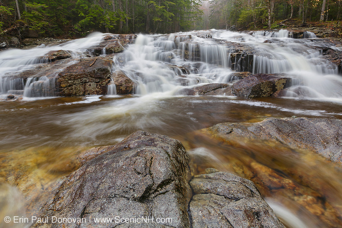 Cascade Brook in Lincoln, New Hampshire on a rainy spring day. This brook is located along the Basin-Cascades Trail.