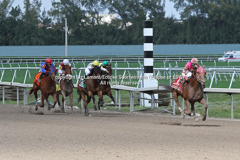 Groupie Doll (KY) with jockey Rajiv Maragh  on board wins the Hurricane Bertie G3 Stakes at Gulfstream Park.  Hallandale Beach, Florida 02-09-2014