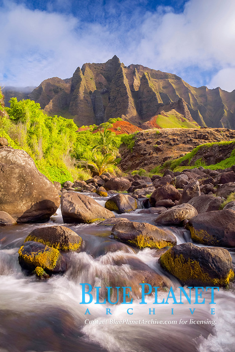cliffs of the Na Pali Coast, viewed from the flowing waters of Kalalau Stream, Kalalau Valley, Na Pali Coast State Park, Na Pali Coast, Kauai, Hawaii, USA