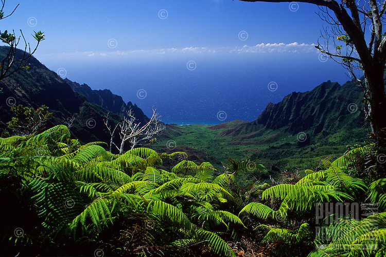 Kalalau Valley from Pihea trail, Napali Coast, Kauai
