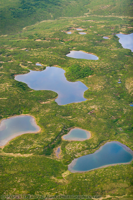 Aerial of kettle lakes on the tundra, Denali National park, Alaska