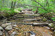 Remnants of a spur line along the East Branch & Lincoln Railroad (1893-1948) in the Pemigewasset Wilderness of New Hampshire. This spur line began off the railroad's North Fork Branch, at North Fork Junction, and traveled up this rocky brook bed. Wet areas were corduroyed with small trees laid crossways.