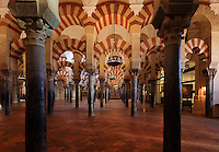 The hypostyle prayer hall, area built in the 10th century under Al-Mansur, 987-988, with christian chapels on the right, in the Cathedral-Great Mosque of Cordoba, in Cordoba, Andalusia, Southern Spain. The hall is filled with rows of columns topped with double arches, a horseshoe arch below a Roman arch, in stripes of red brick and white stone. The first church built here by the Visigoths in the 7th century was split in half by the Moors, becoming half church, half mosque. In 784, the Great Mosque of Cordoba was begun in its place and developed over 200 years, but in 1236 it was converted into a catholic church, with a Renaissance cathedral nave built in the 16th century. The historic centre of Cordoba is listed as a UNESCO World Heritage Site. Picture by Manuel Cohen