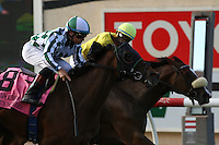 DEL MAR, CA  JULY 16: #8 She's Not Here ridden by jockey Drayden Van Dyke gets the head bob over #1 Fresh Feline and Victor Espinoza,  to win the Yellow Ribbon Handicap (GII) at Del Mar Turf Club in Del Mar, CA on July 16, 2016 (Photo by Casey Phillips/Eclipse Sportswire/Getty ImagesDEL MAR, CA  JULY 16: (Photo by Casey Phillips/Eclipse Sportswire/Getty Images