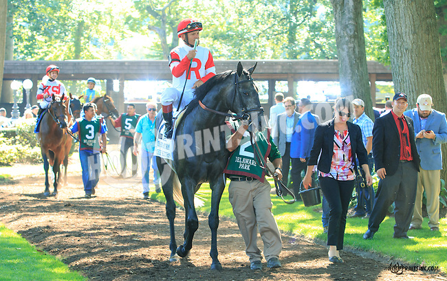 Chief Kitten before The Kent Stakes (gr 3) at Delaware Park on 7/18/15