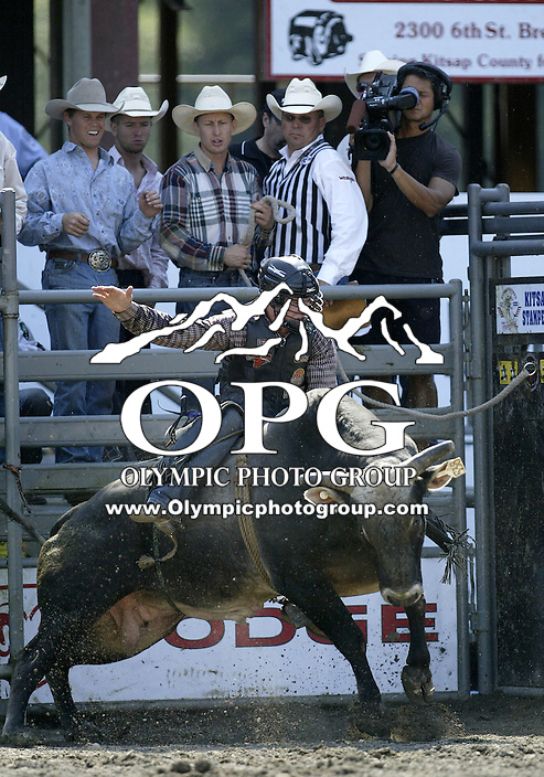 30 Aug 2009:  Beau Schroeder riding the bull Get It,Got it,Gone was not able to score on his ride during the Extreme Bulls tour stop in Bremerton, Washington.  Bremerton was the last stop in the Wrangler Million Dollar Pro Rodeo Silver Tour for 2009.