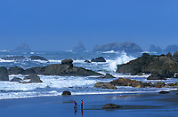 769550499 children enjoying the beach and surf with sea stacks in the background at harris state beach near brookings along the southern pacific coast of oregon