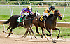 Gentle Officer winning at Delaware Park on 9/21/13
