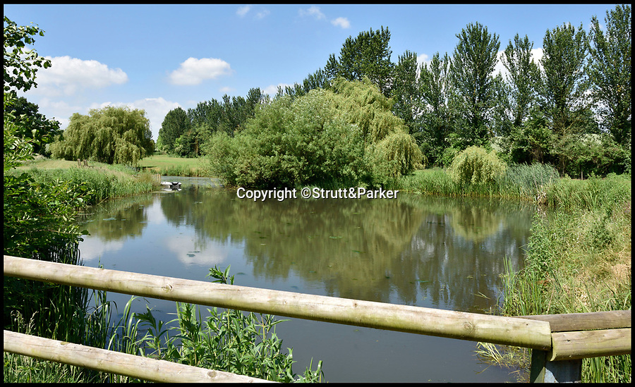 Bournemouth News (01202 558833)<br /> Pic: Strutt&Parker/BNPS<br /> <br /> Gone Fishing...The property even has its own lake.<br /> <br /> The ultimate Good Life is ready-made and up for grabs at a country farmhouse on the market for £850,000.<br /> <br /> Tuckerton Farm near Bridgwater, Somerset, is not only self-sufficient in fruit and vegetables, but it even has its own wine supply from a hobby vineyard in the grounds.<br /> <br /> There is also chickens, which provide a steady supply of eggs, an orchard with cider, cooking and eating apples and they offset their electricity bill by selling the electric from their solar panels back to the grid.<br /> <br /> The rundown house was in such a bad state when Barbara Pitkin, 60, and her wife Sue Frost, 52, bought it that their surveyor told them not to buy it and did not charge them for his services.