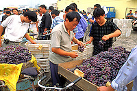 People buying grapes