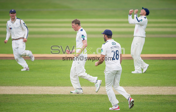 Picture by Allan McKenzie/SWpix.com - 11/05/2016 - Cricket - Specsavers County Championship Div One - Yorkshire County Cricket Club v Surrey County Cricket Club - Headingley Cricket Ground, Leeds, England - Yorkshire's Steve Patterson celebrates the dismissal of Surrey's Thomas Curran.