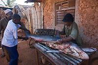 Afrique/Afrique de l'Est/Tanzanie/Zanzibar/Ile Unguja/Makunduchi: scenes de vie au village - decoupe du poisson