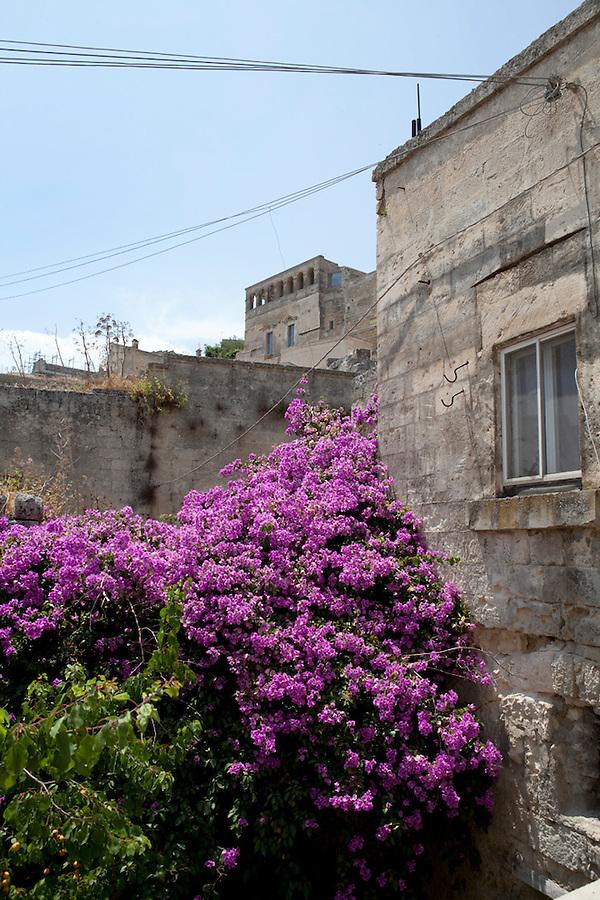 Basilicata, ITALY Matera, Basilicata, italy Matera, Basilicata, Italy, Europe