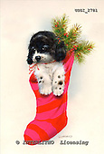 GIORDANO, CHRISTMAS ANIMALS, WEIHNACHTEN TIERE, NAVIDAD ANIMALES, paintings+++++,USGI2781,#XA# christmas stocking dogs,puppies