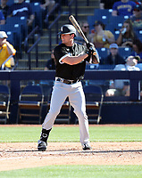 Jaycob Brugman - Chicago White Sox 2020 spring training (Bill Mitchell)