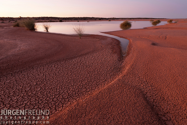 Dry cracked desert soil with remnants of water along the Oodnadatta Track in between sand dunes.