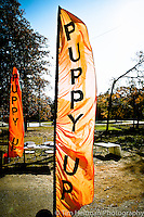 Puppy Up Texoma 2012