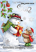 John, CHRISTMAS ANIMALS, WEIHNACHTEN TIERE, NAVIDAD ANIMALES, paintings+++++,GBHSSXC50-1019B,#XA#