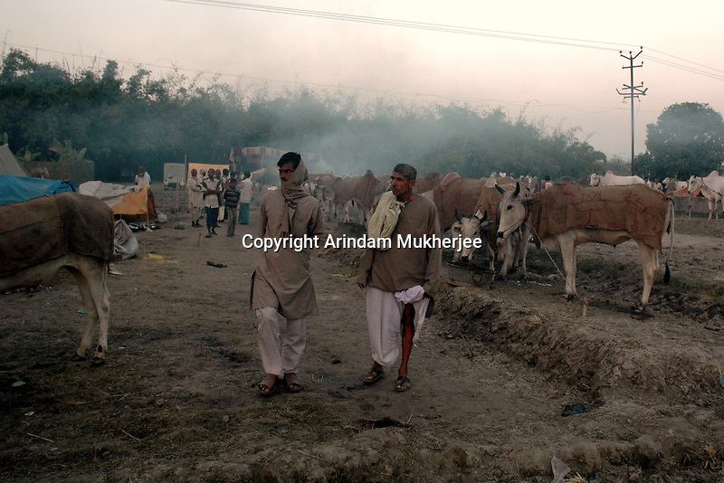 Animal buyers at Sonepur fair ground. Bihar, India, Arindam Mukherjee.