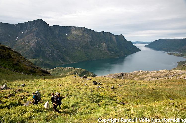 To personer og en hund går til fots på Seiland. Jøfjorden i bakgrunnen. ---- Two persons and a dog hiking on the island Seiland.
