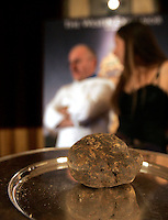 Asta Internazionale del Tartufo Italiano, a Roma, 12 dicembre 2009..A truffle is seen during the International Auction of the Italian Truffle in Rome, 12 december 2009..UPDATE IMAGES PRESS/Riccardo De Luca