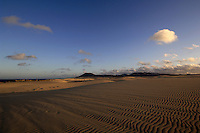 Sand dunes and patterns of the sand as the sun sets, Corralejo, Fuerteventura, Canary Islands, Spain. May 2007