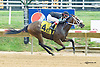 Fifth Avenue Girl winning at Delaware Park on 9/9/15