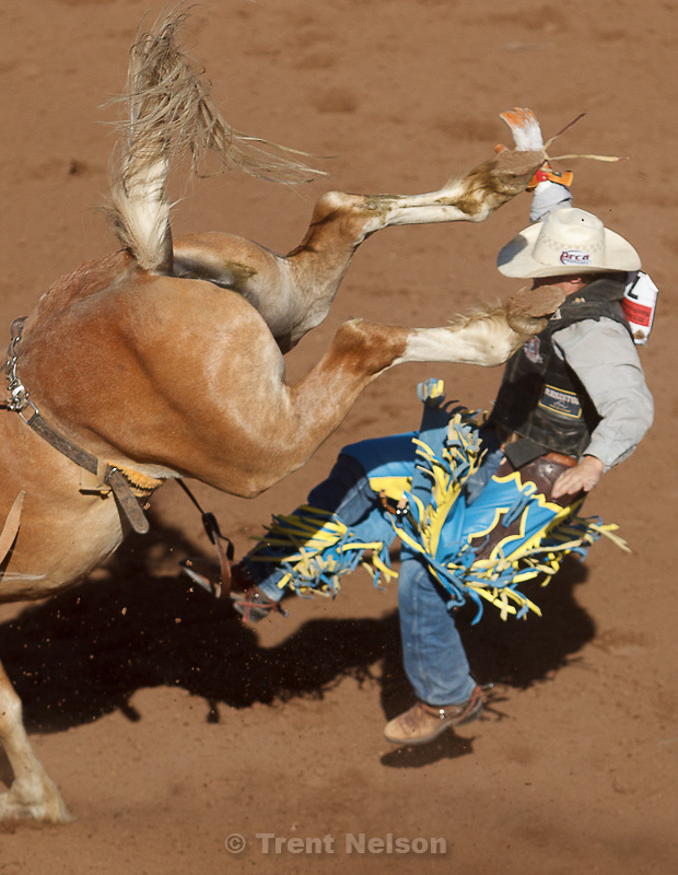 Trent Nelson  |  The Salt Lake Tribune.Cody Franson in the bareback competition at the Utah High School Rodeo Finals Saturday, June 9, 2012 in Heber City, Utah.