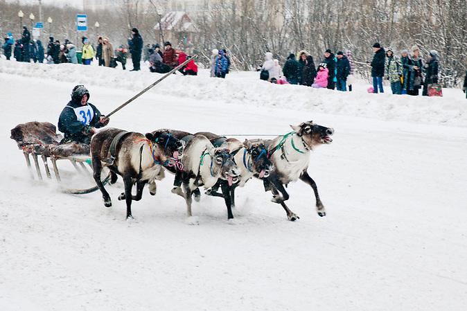 Das Rentierrennen in Workuta findet jedes Jahr statt. Workuta ist vor allem ein Begriff wegen des stalinistischen Straflagers, das bis in die siebziger Jahre dort im äußersten Norden der Sowjetunion existierte. Heute ist Workuta eine Stadt mit einer sehr heterogenen Bevölkerung: von Ukrainern aus dem Donbass bis hin zu Rentierzüchtern, die der Urbevölkerung angehören. Diese veranstalten immer zum Ende des Jahres ein Rennen mit den Tieren.