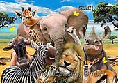 Howard, SELFIES, paintings+++++,GBHR881V,#Selfies#, EVERYDAY ,elephants