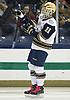 Notre Dame Hockey 2013-2014