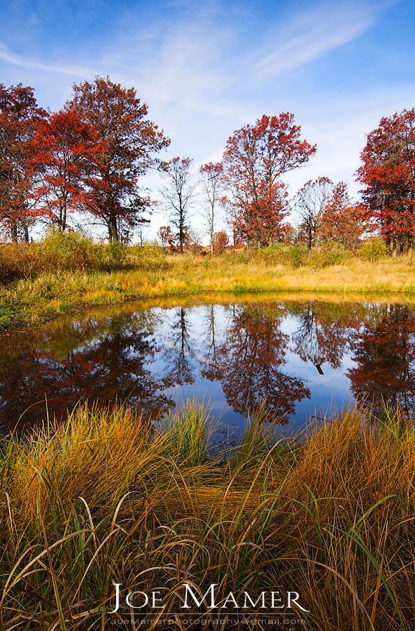 Small pond on Wisconsin prairie surrounded by oak trees in fall color.