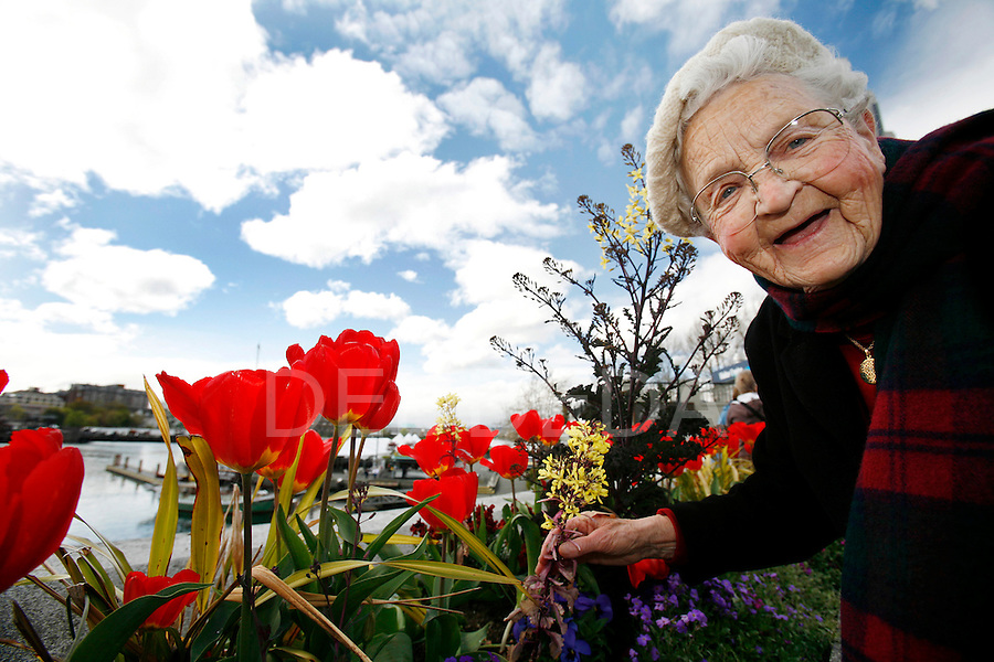 Else Jensen, 87, a frequent visitor from Seattle, enjoys the flowers in bloom along Victoria's Inner Harbour Monday afternoon. Photo assignment for the Globe and Mail national newspaper in Canada.