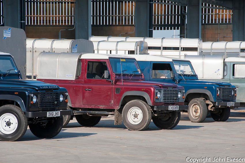 Land Rover 4x4 vehicles and livestock trailers at Welshpool Livestock Market, Powys.