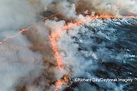 63863-03008 Prescribed Burn by IDNR Prairie Ridge State Natural Area Marion Co. IL