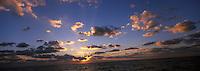 Europe/France/Corse/2A/Corse-du-Sud/Env de Proriano:  golfe de Valinco au soleil couchant