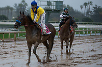 ARCADIA, CA  MARCH 10: A very muddy #8 Mubtaahij, ridden by Mike Smith,and #7 Accelerate, ridden by Victor Espinoza,, after the Santa Anita Handicap (Grade l) on March 10, 2018, at Santa Anita Park in Arcadia, CA. (Photo by Casey Phillips/ Eclipse Sportswire/ Getty Images)
