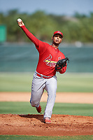 GCL Cardinals starting pitcher Brian Pirela (29) delivers a pitch during a game against the GCL Mets on July 23, 2017 at Roger Dean Stadium Complex in Jupiter, Florida.  GCL Cardinals defeated the GCL Mets 5-3.  (Mike Janes/Four Seam Images)