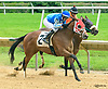 Kennesaw Recruit winning at Delaware Park on 6/7/17