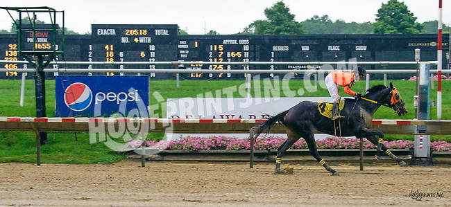 Can'tmakethisup winning at Delaware Park on 7/6/17