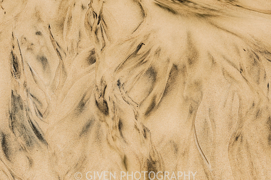 Sand Pattern, Ecola State Park, Oregon