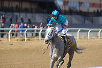 OZONE PARK, NY - APRIL 07: My Miss Lilly (KY) #6, ridden by jockey Joe Bravo, wins the Gazelle Stakeson Wood Memorial Stakes Day at Aqueduct Race Track on April 7, 2018 in Ozone Park, New York. (Photo by Dan Heary/Eclipse Sportswire/Getty Images)