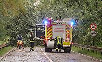 Baum ist auf die B44 am Langener Waldsee gestürzt und blockiert die Straße komplett - 18.08.2019: Unwetter in Rhein-Main